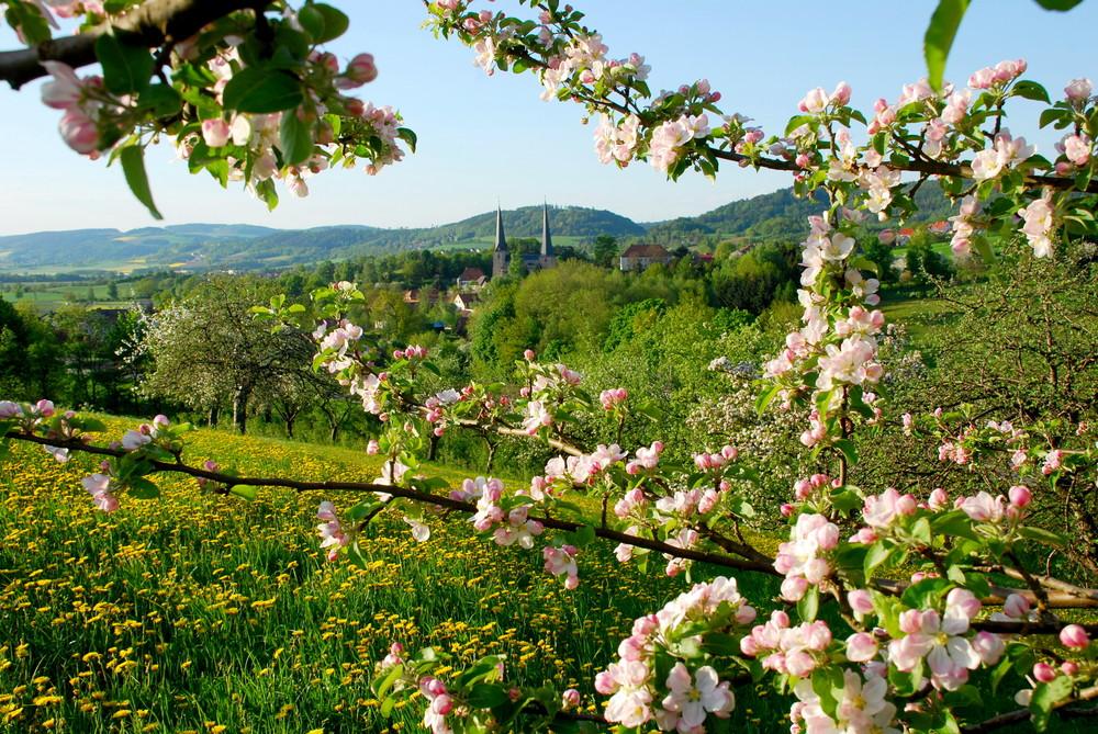 Frühling am Westrand des Fichtelgebirges