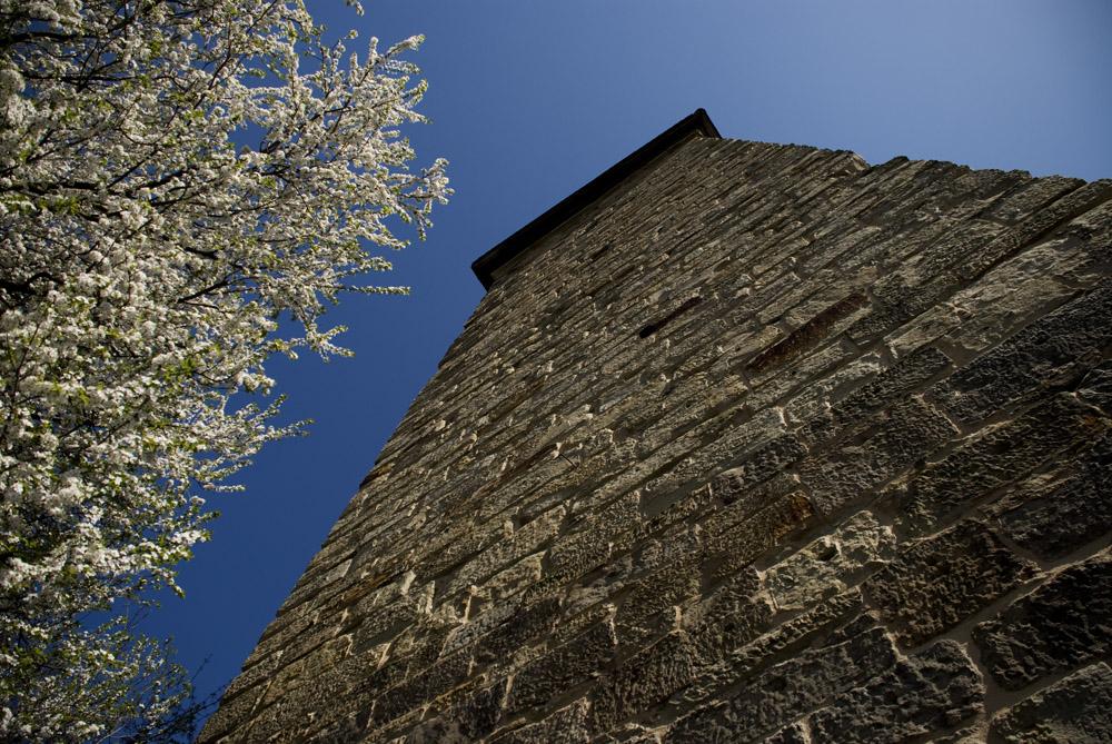 Frühling am Zeiler Stadtturm