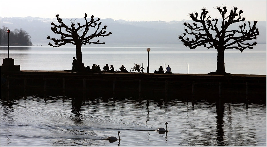 Frühling am Zürichsee