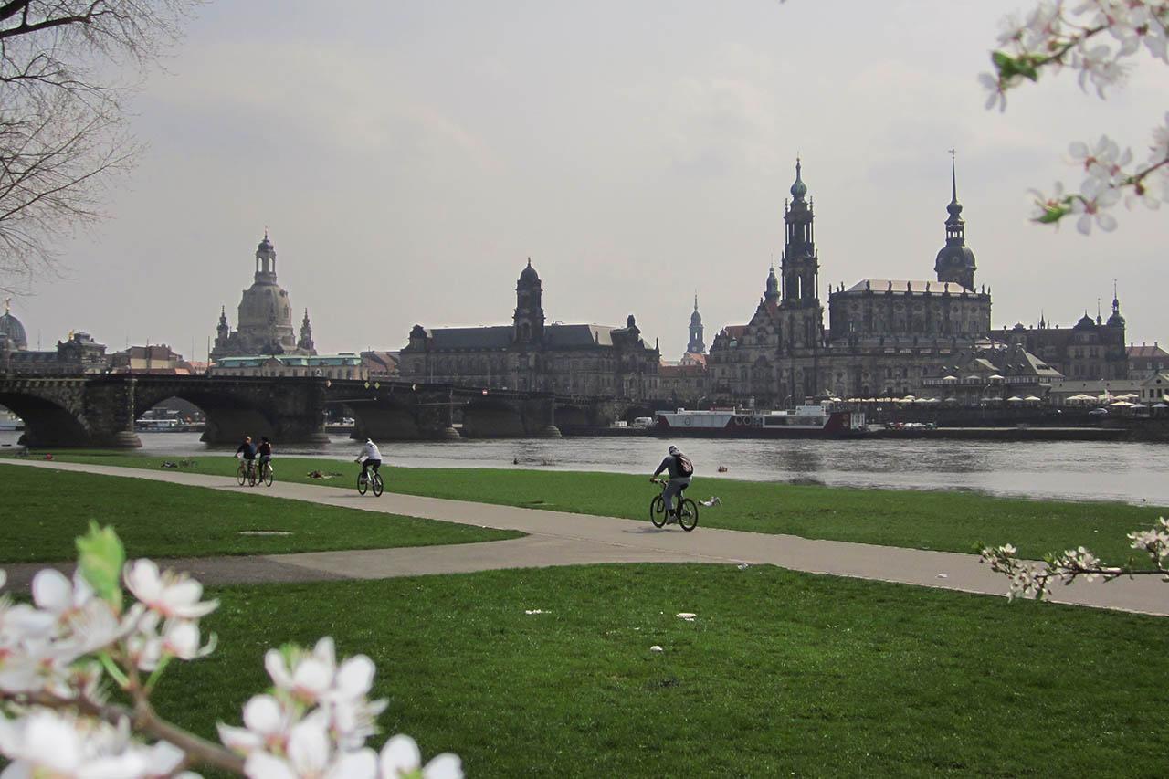 Frühling an der Elbe