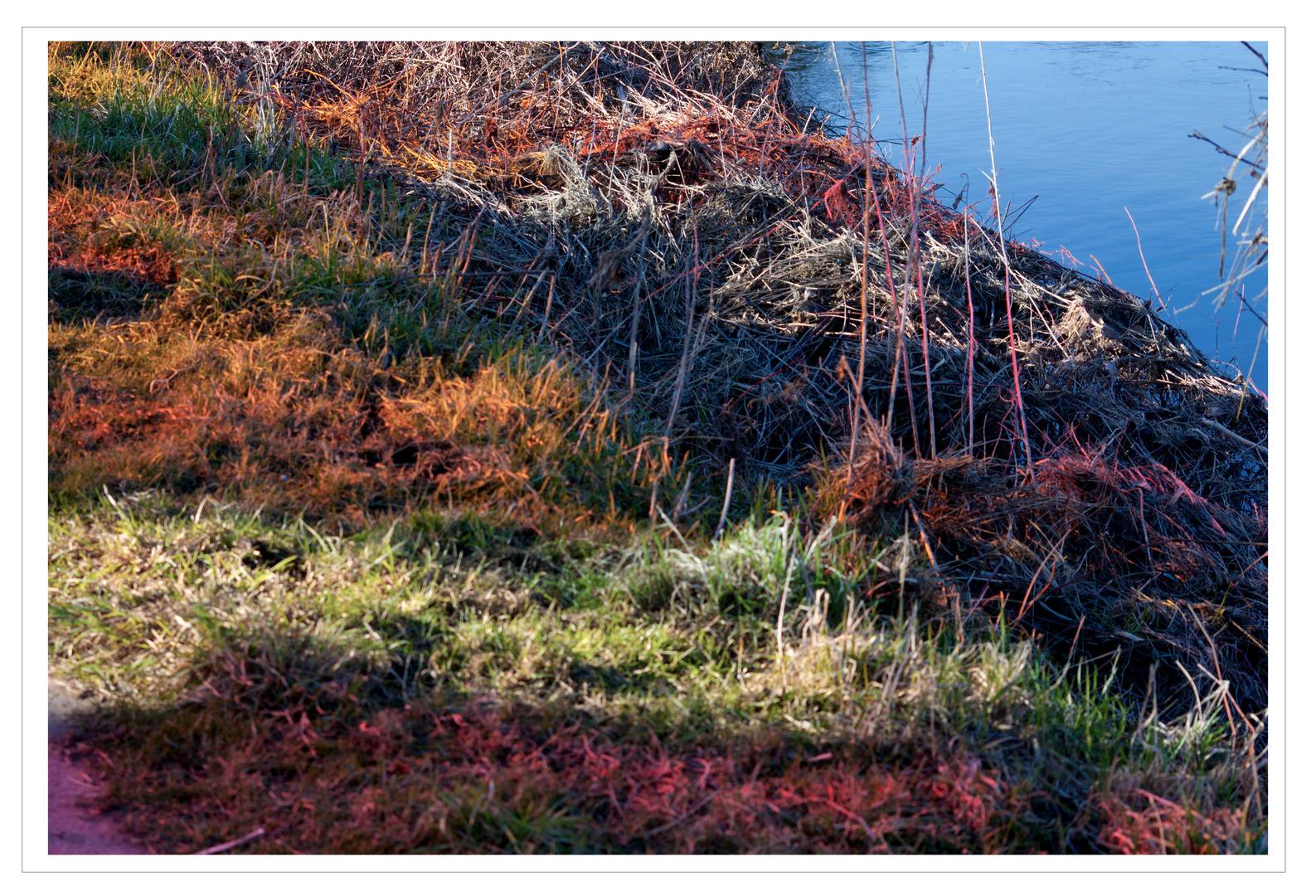 Frühling an der Ruhr II - Im Rausch der Farben