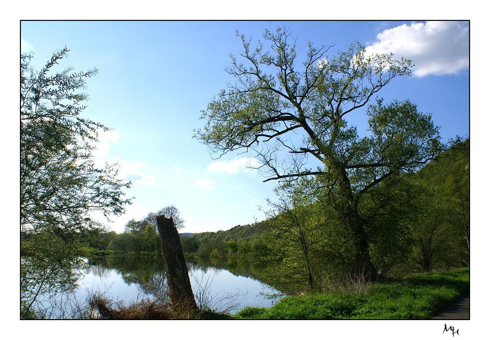 Frühling an der Sieg (Windeck-Stromberg)