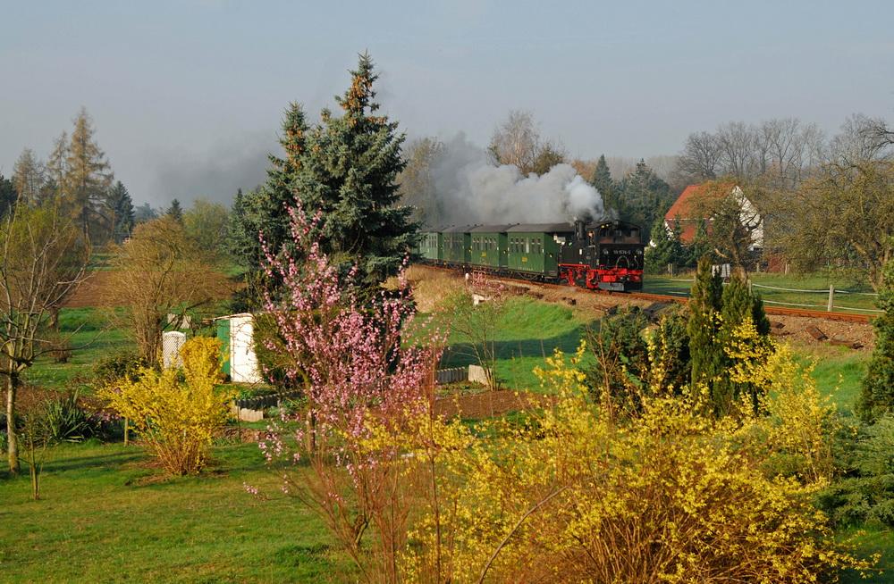 Frühling auf der Döllnitzbahn