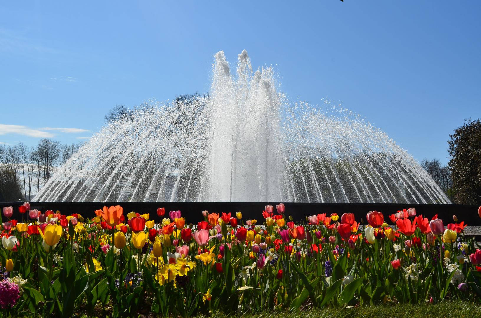 Frühling auf der EGA Erfurt