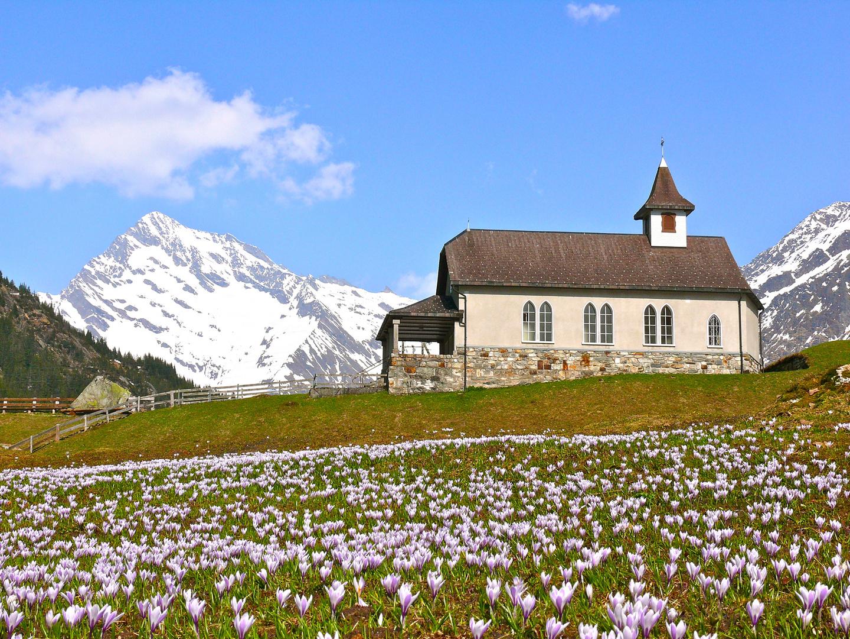 Frühling auf Golzern , mit Bruderklausenkappelle