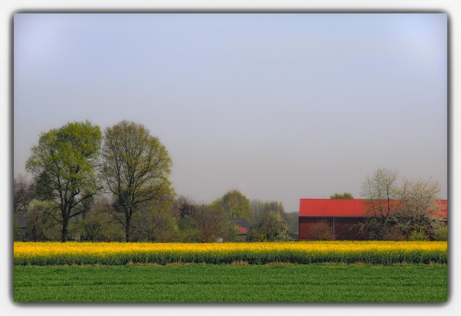 Frühling bei uns auf dem Land  II