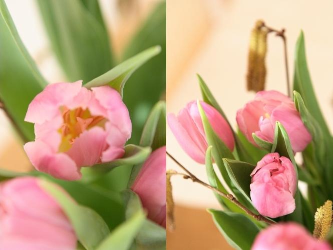 Frühling, bist du es?