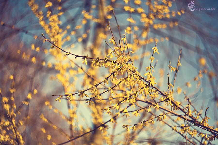Frühling....