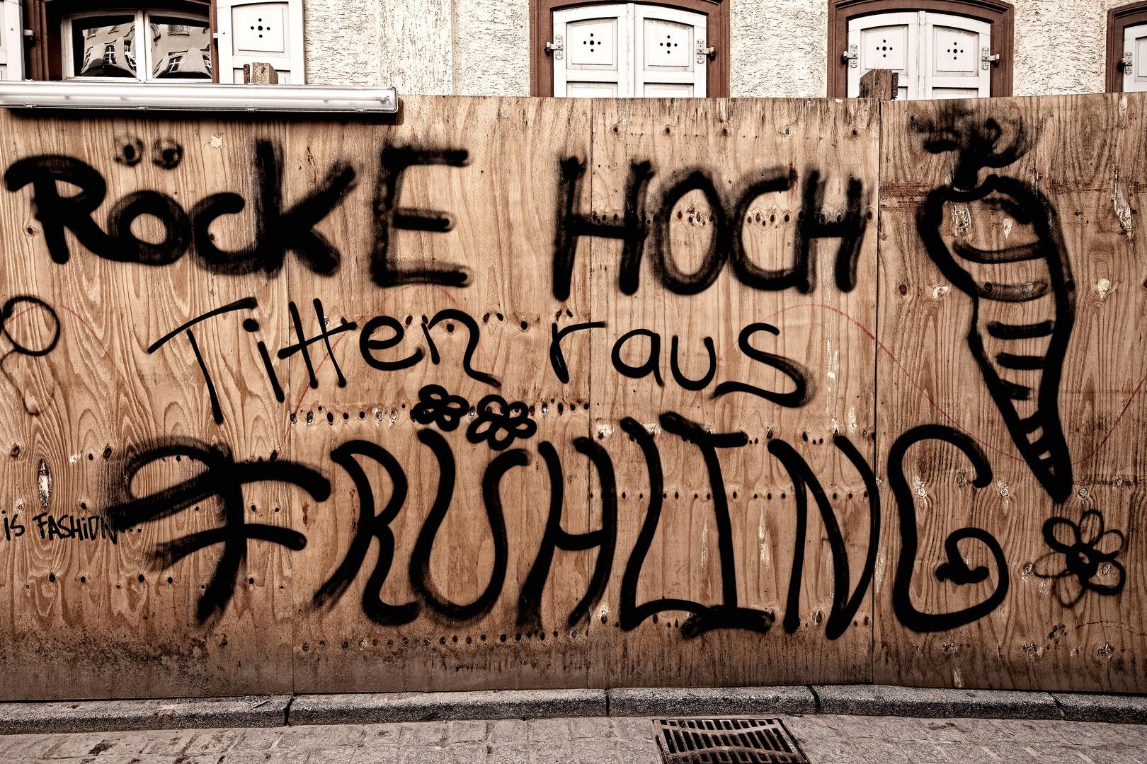 """""""Frühling""""-Graffiti in Heidelberg"""