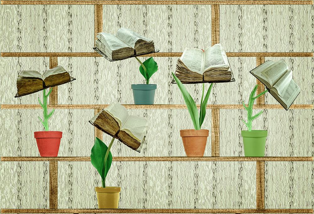 Frühling im Bücherregal
