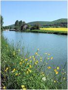 Frühling im Burgund