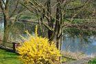 Frühling im Emsland