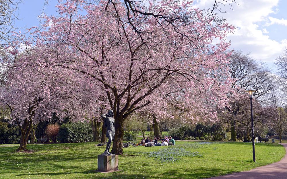 Frühling im Essener Stadtpark