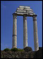 Frühling im Forum Romanum