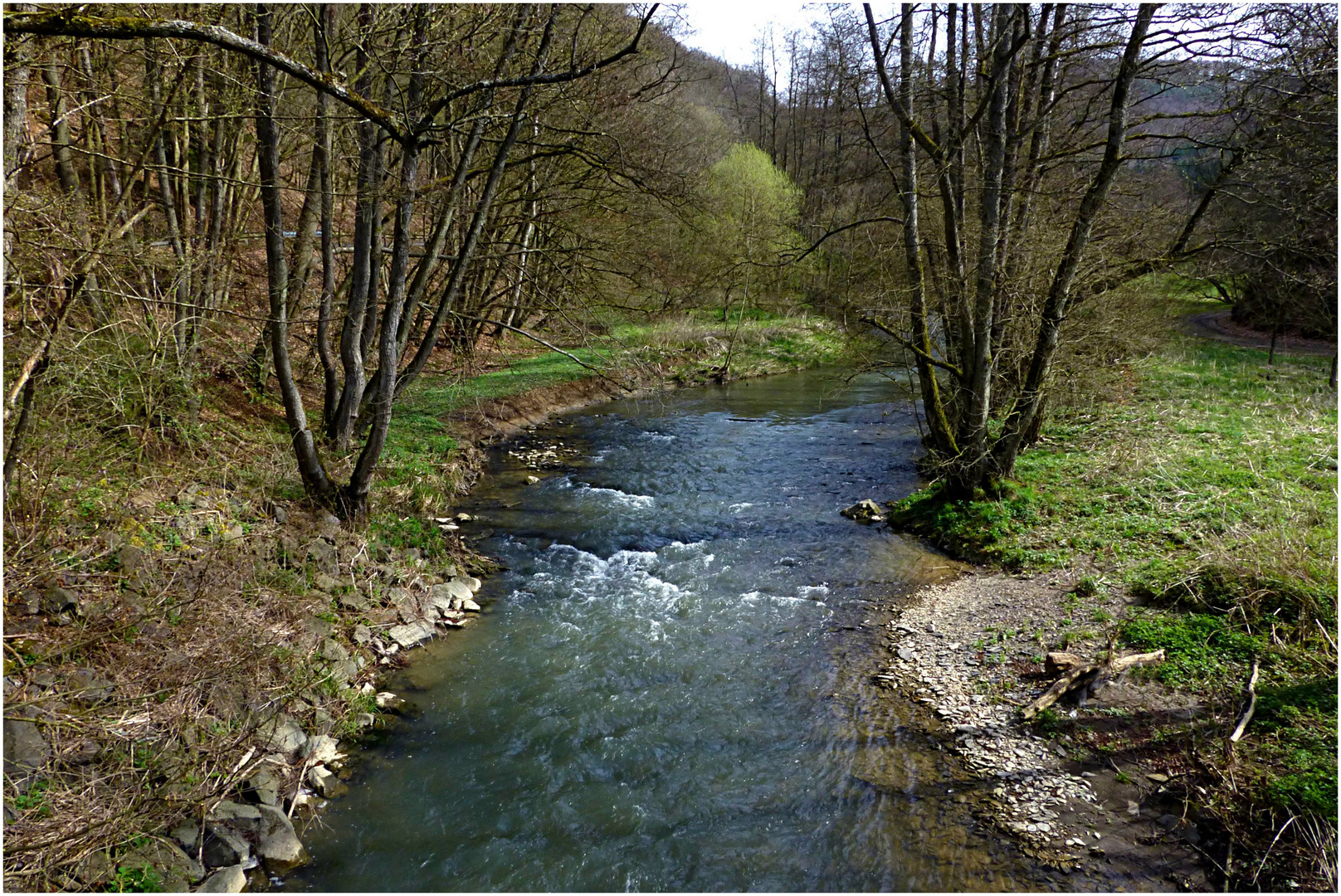 Frühling im Gelbachtal / Westerwald (1)