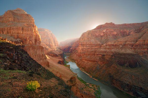 Frühling im Grand Canyon