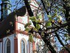 Frühling im Kloster St. Marienstern in Panschwitz-Kuckau