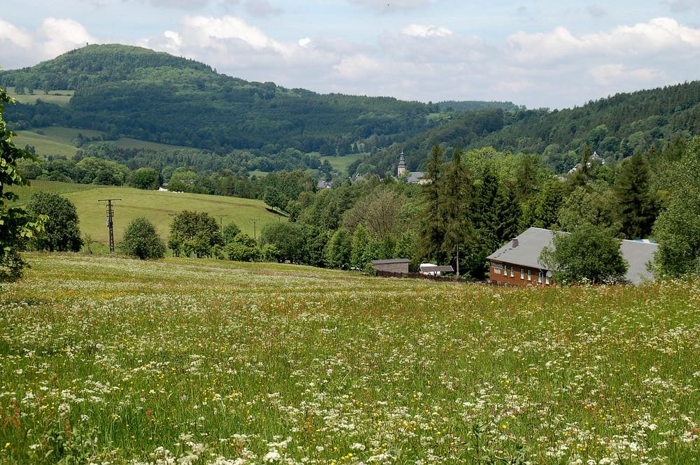 Frühling im Osterzgebirge
