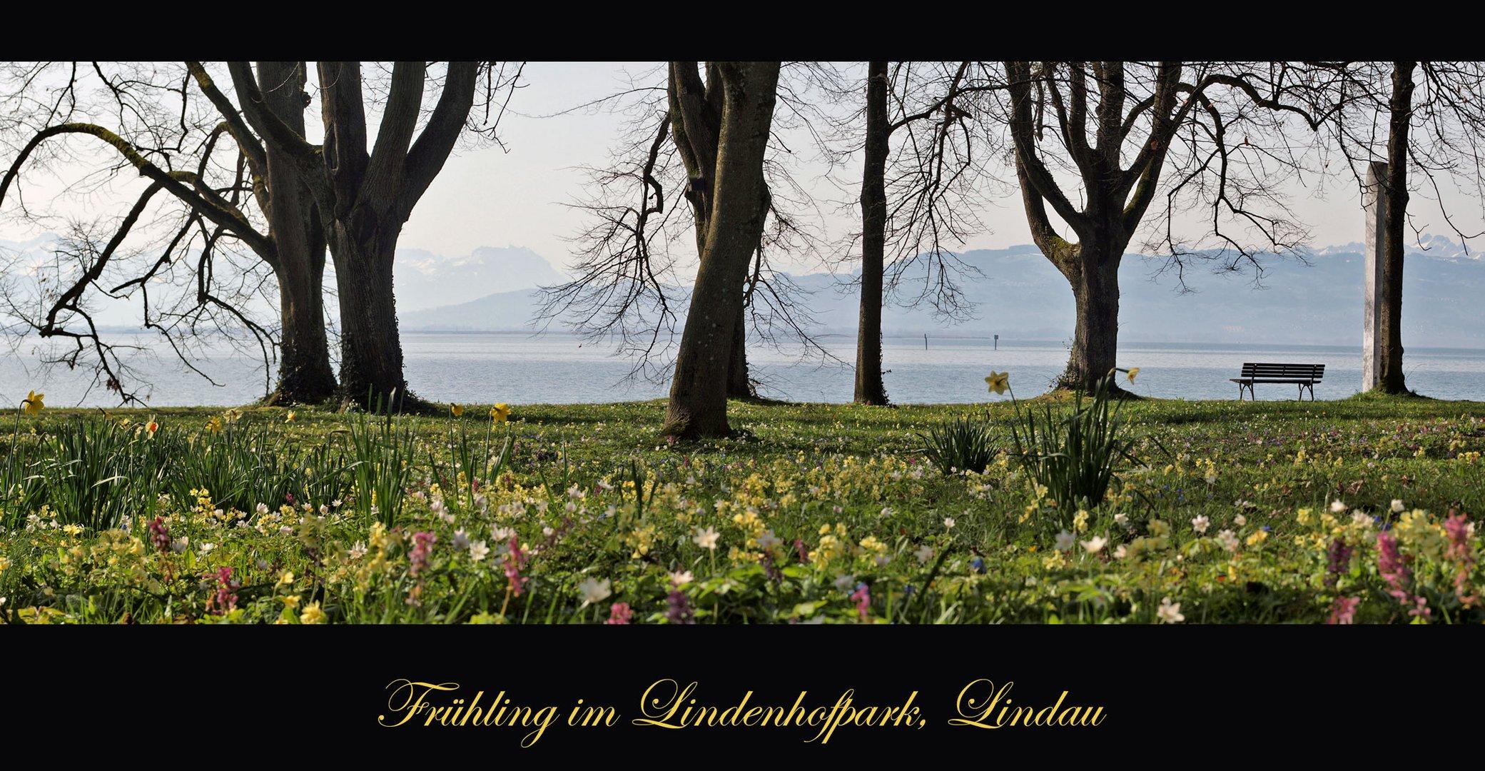 Frühling im Park 6