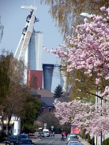 Frühling im Ruhrgebiet