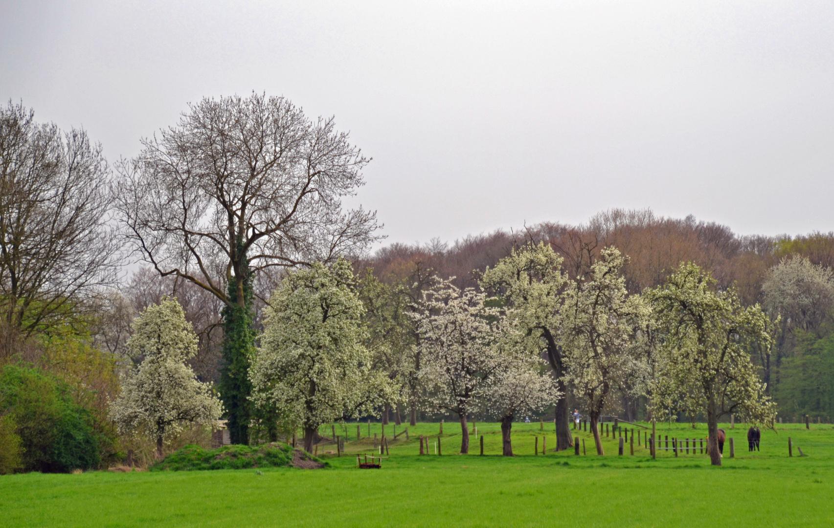 Frühling im Ruhrpott