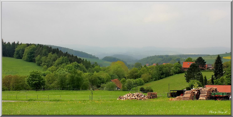 Frühling im Schaumburger Land