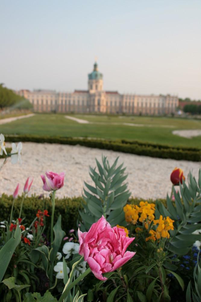 Frühling im Schloßgarten