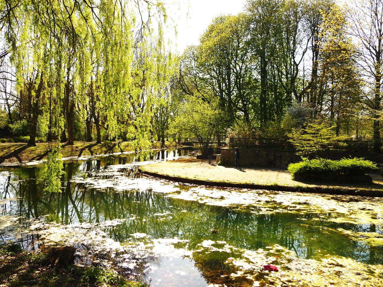 Frühling im Schloßpark