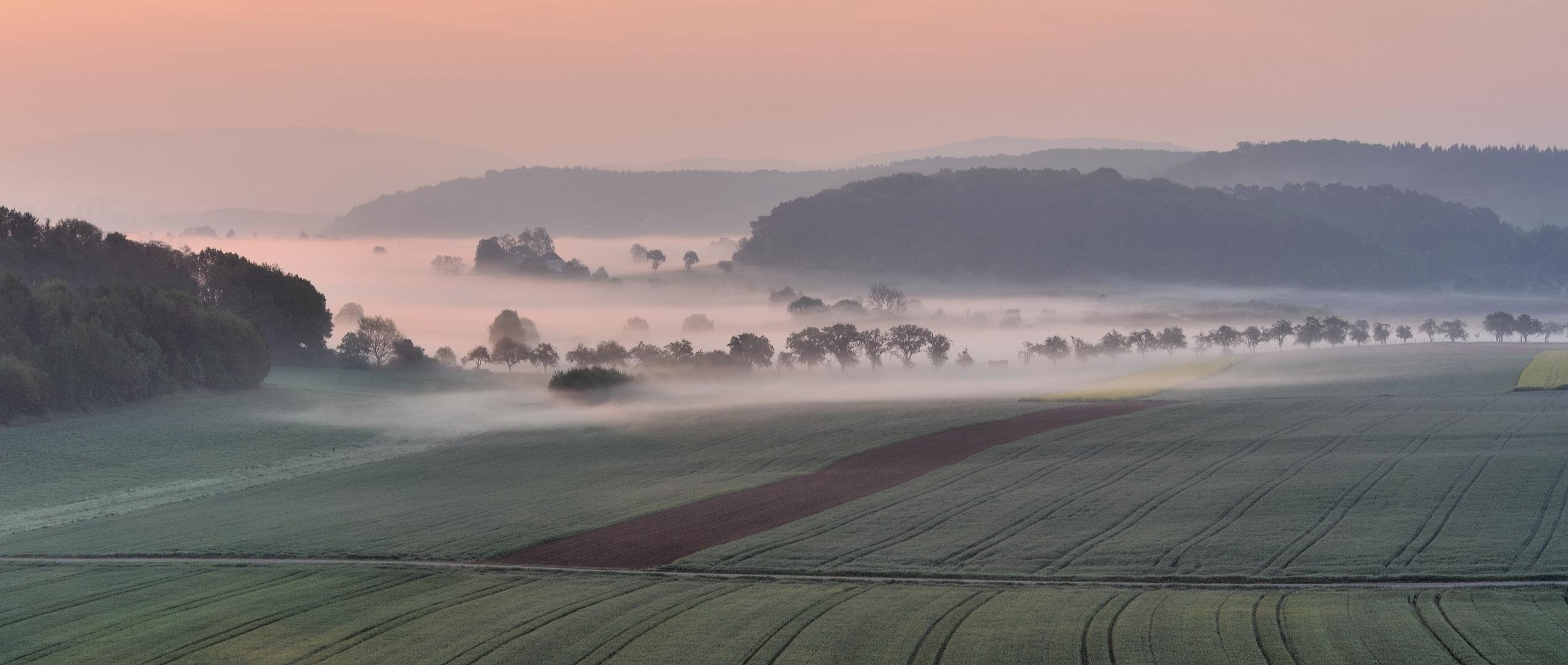 *Frühling im Tal der Morgennebel*