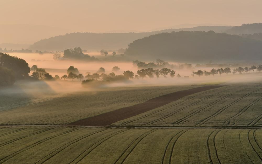 *Frühling im Tal der Morgennebel III*