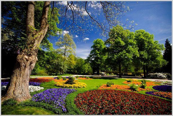 Frühling im Tiergarten