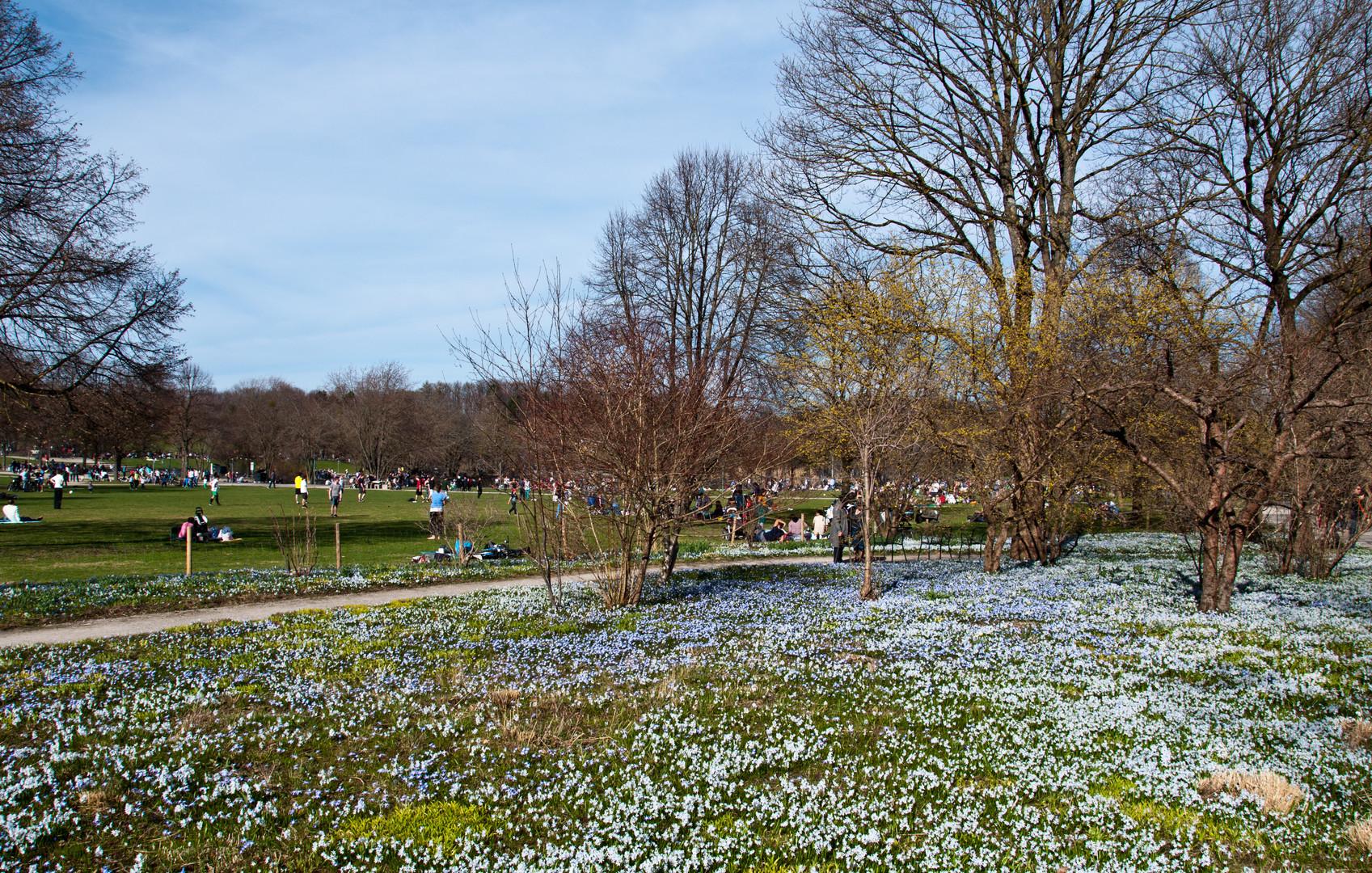 Frühling im Westpark (2)