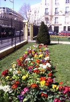 Frühling im XVII. Bezirk