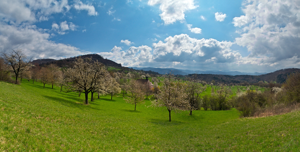 Frühling in Baden