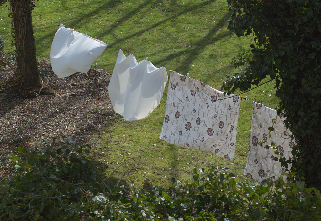 Frühling in *Baumwolle*