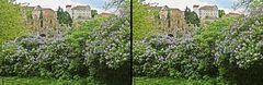 Frühling in Bautzen (3D)