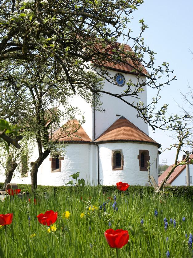 Frühling in Böckweiler