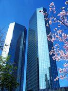 Frühling in der City I