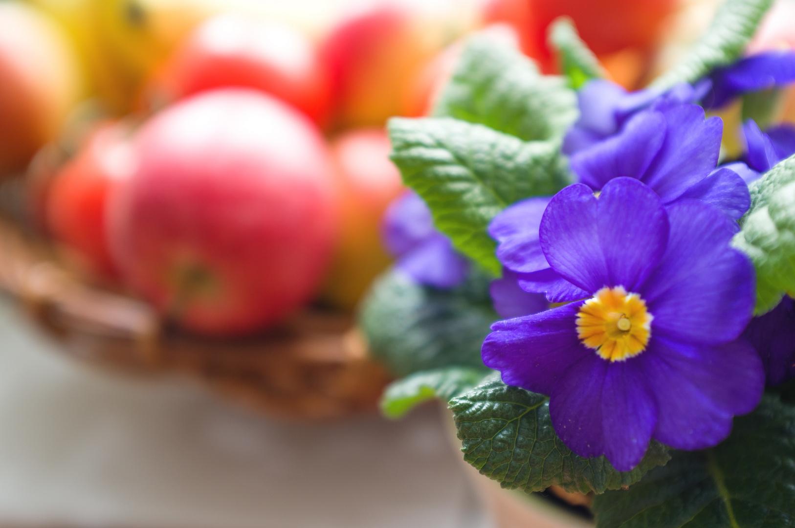 Frühling in der Küche