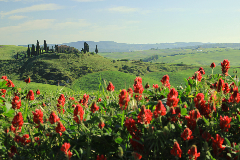 Frühling in der Toscana.