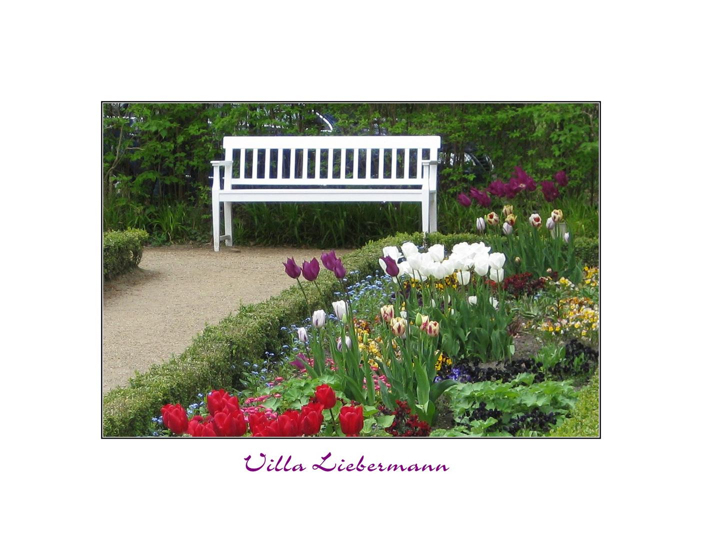 Frühling in der Villa Liebermann III