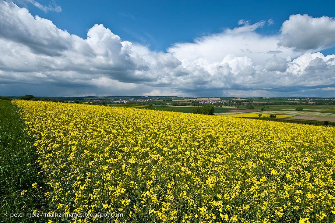 Frühling in der Wetterau / Hessen