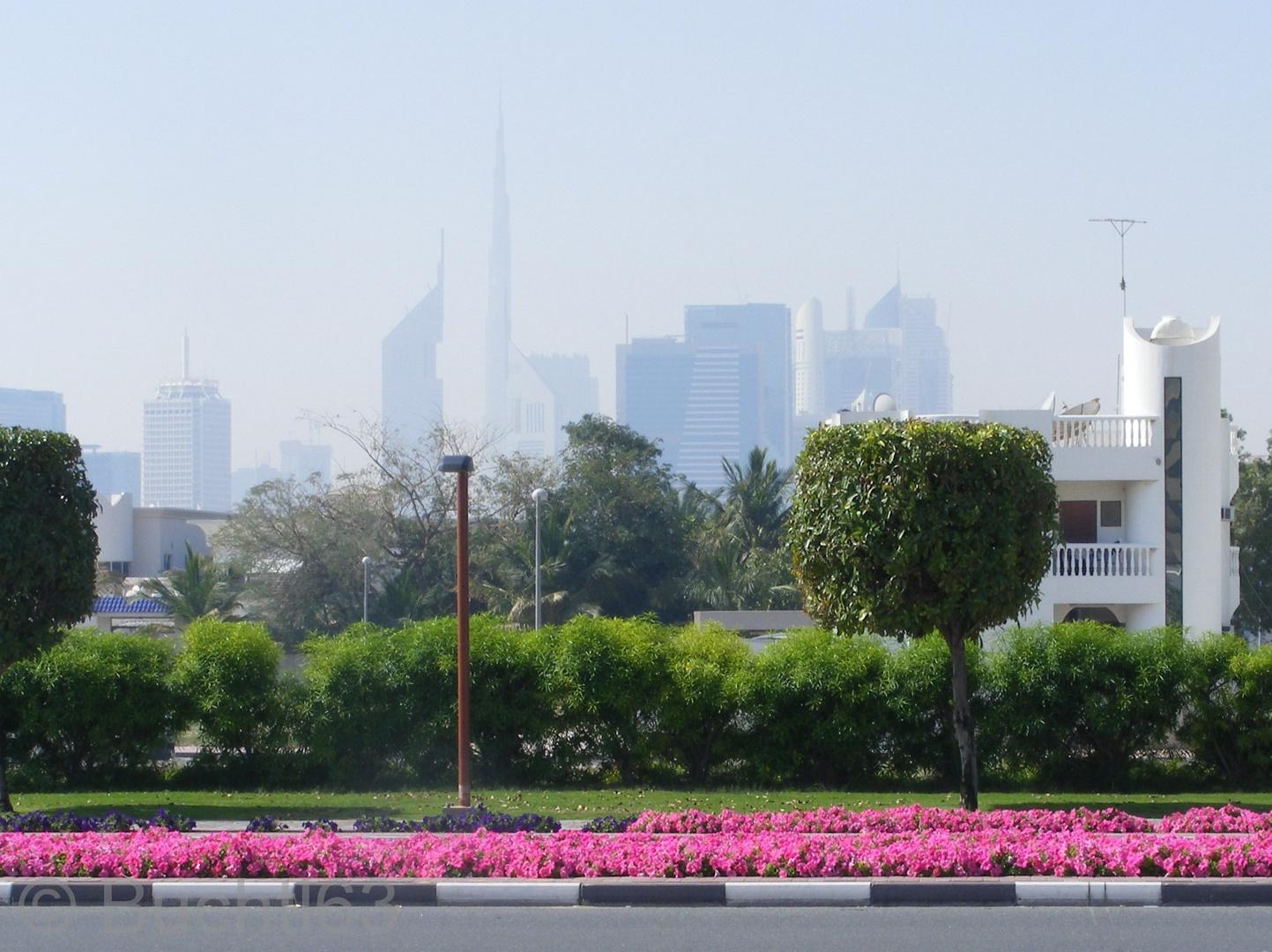 Frühling in Dubai