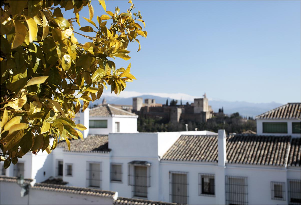 Frühling in Granada