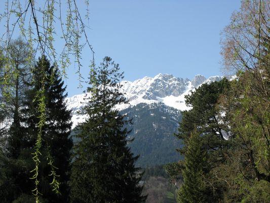 Frühling in Innsbruck