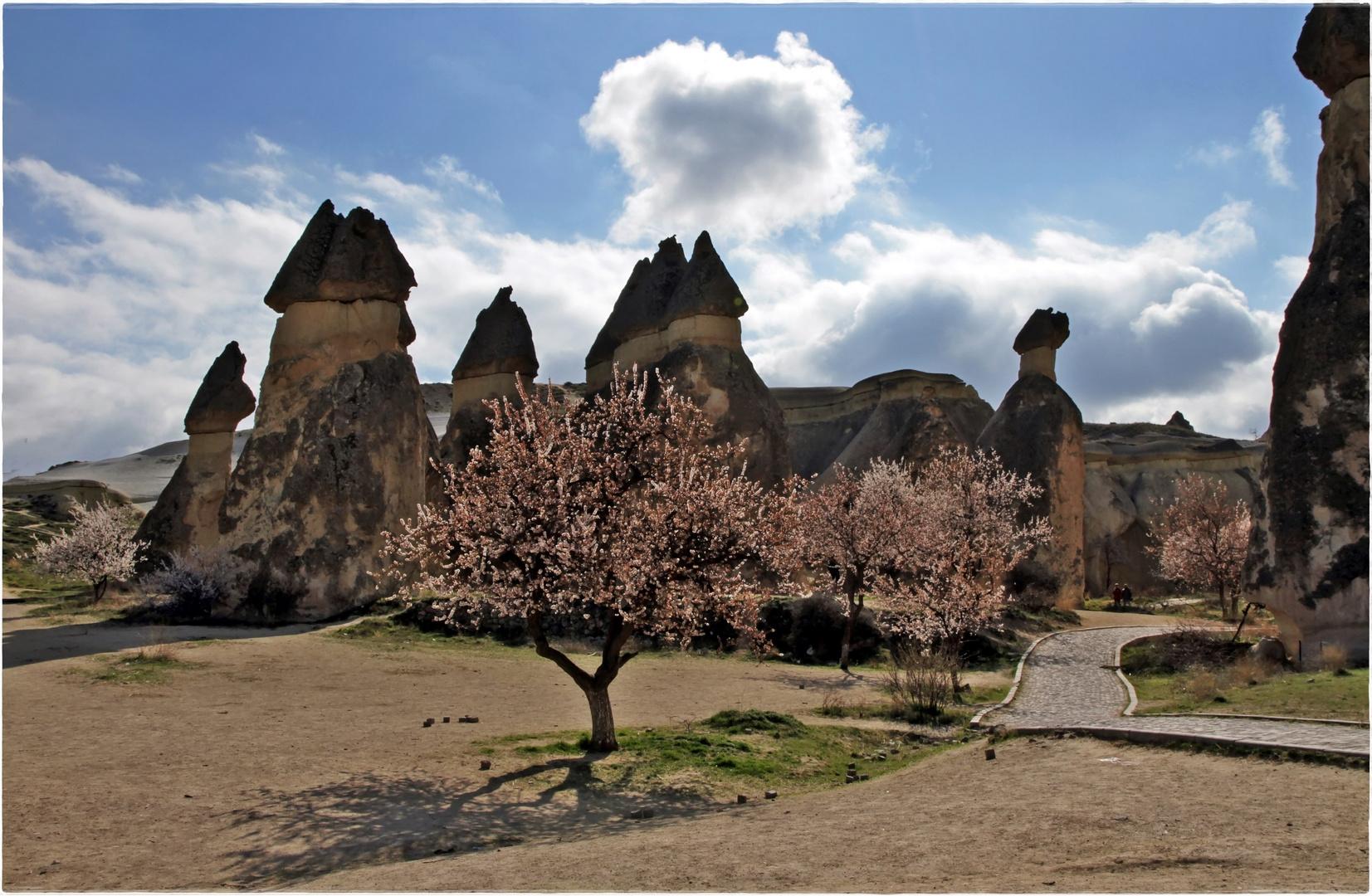 Frühling in Kappadokien