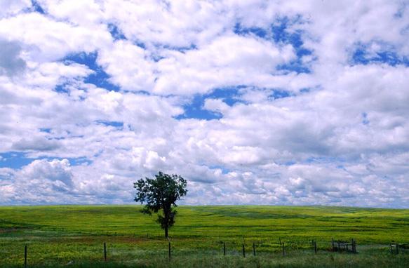 Frühling in Montana