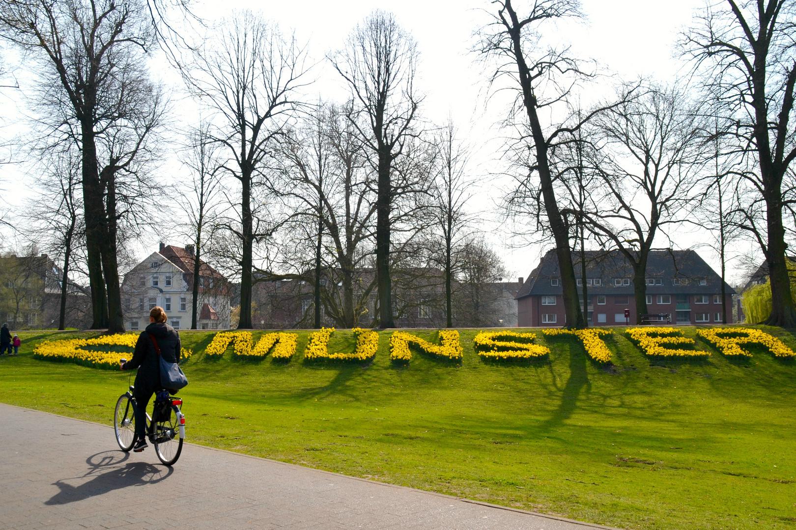 Frühling in Münster