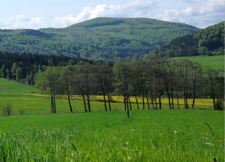 Frühling in Niederösterreich..