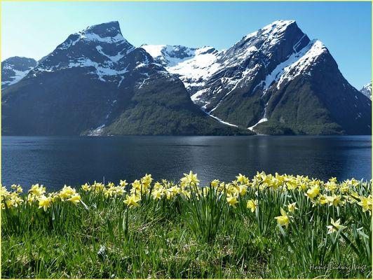 Frühling in Norwegen (1)